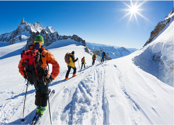 альпийские лыжи<br />